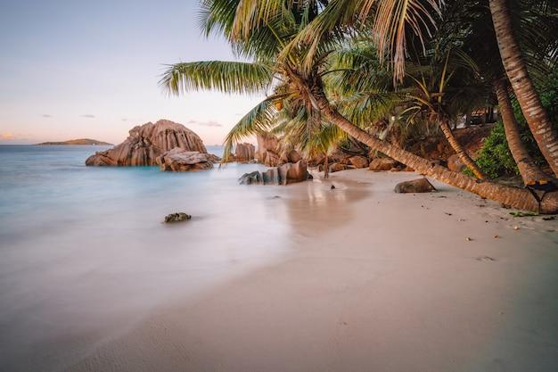 Wyspa la digue, seszele. piękna tropikalna spokojna piaszczysta plaża z egzotycznymi drzewami roślin w wieczorny zachód słońca. koncepcja lokalizacji wakacji wakacyjnych.
