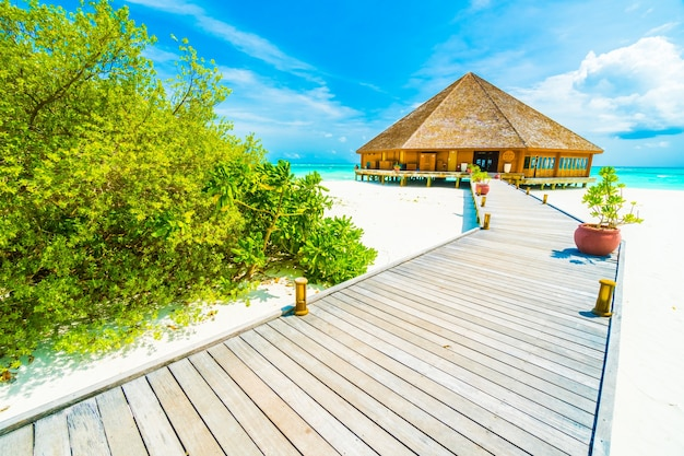 Wyspa malediwy