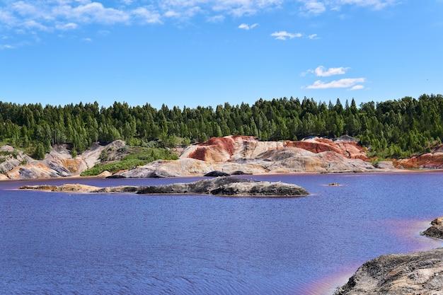Wyspa, na której mewy zaczęły gniazdować na środku jeziora w starym kamieniołomie kaolinu