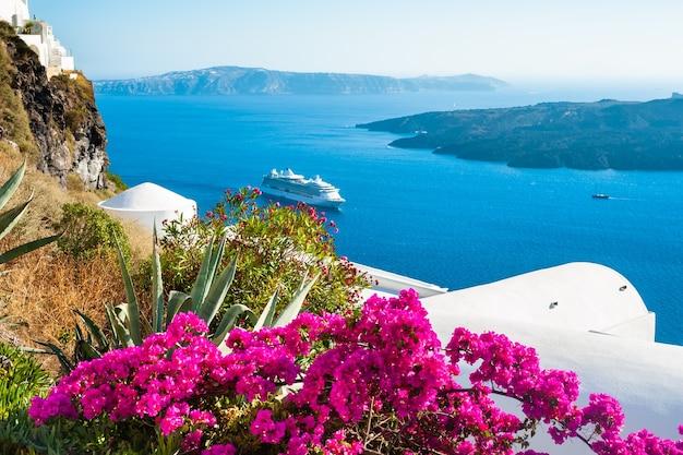 Wyspa santorini, grecja. biała architektura i różowe kwiaty z widokiem na morze. podróże i wakacje