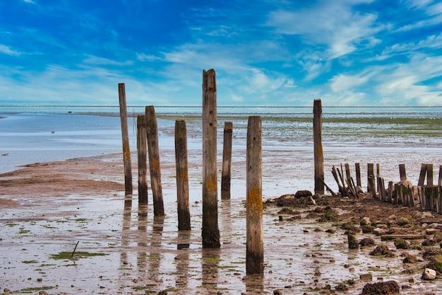 Wyspa texel - holandia - wadden morza północnego