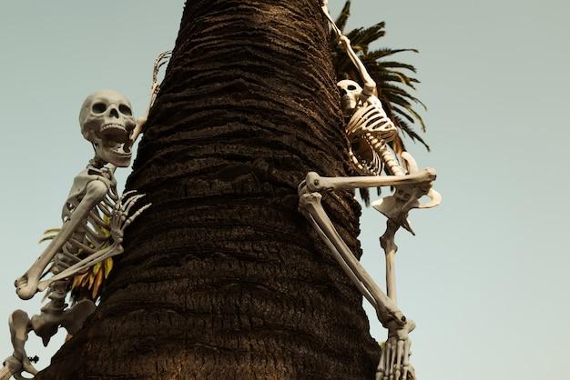 Wystrój na zewnątrz na halloween. martwy właściciel w oknie domu. szkielet. dekoracje halloween. straszne wakacje w domu. halloween w usa. tradycje i wystrój domu.
