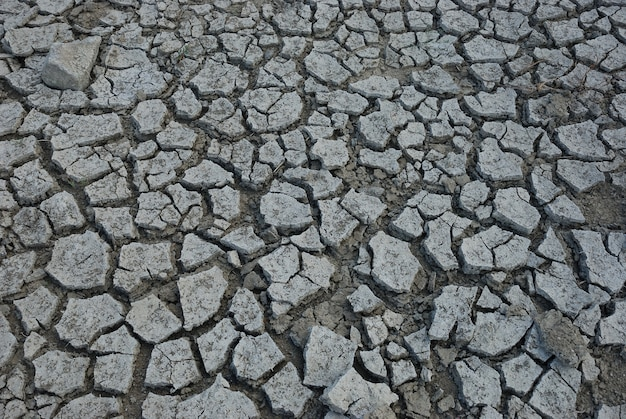 Wysuszonej suszy zmielony tło