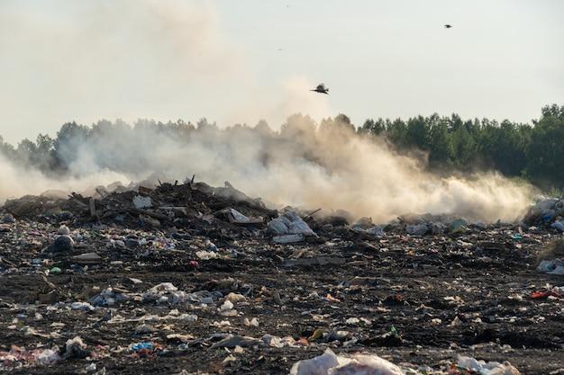 Wysypisko miasta z różnymi oparzeniami śmieci w słoneczny letni dzień