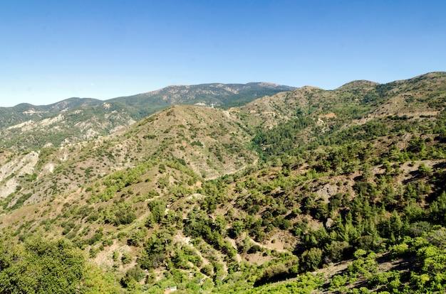 Wzgórza cypru