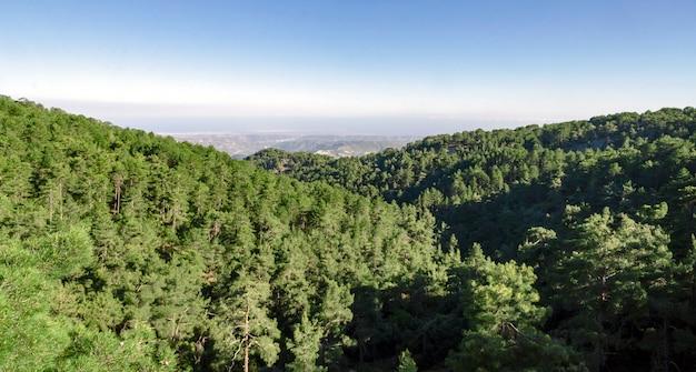 Wzgórza cyprys