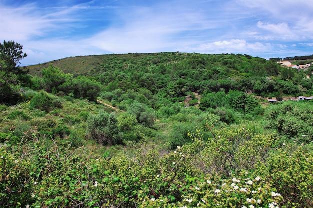 Wzgórza i doliny w portugalii