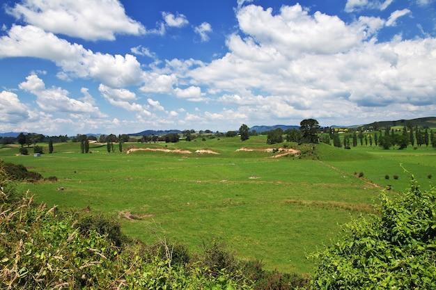 Wzgórza i pola nowej zelandii