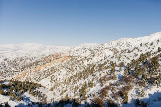Wzgórza pokryte śniegiem w słoneczny dzień w górach