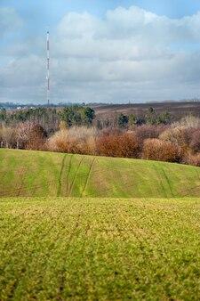 Wzgórza pola pszenicy ozimej trzeba odnowić po zimie, trzeba nawozić