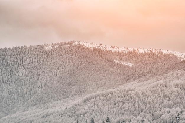 Wzgórza z śnieżnym lasem. zimowy krajobraz