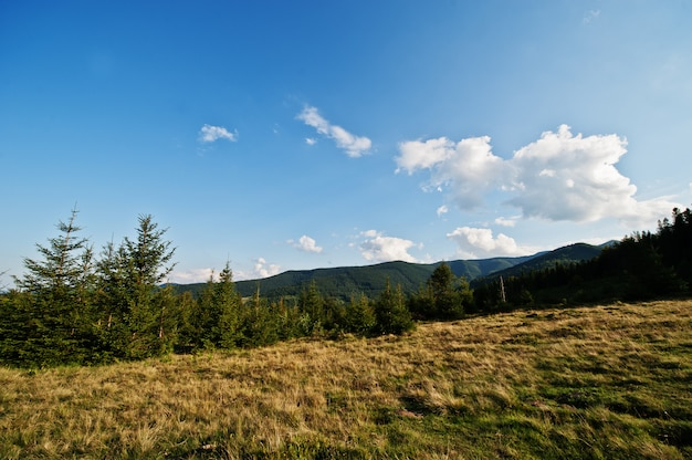 Wzgórze i góry na karpackich górach na ukraina