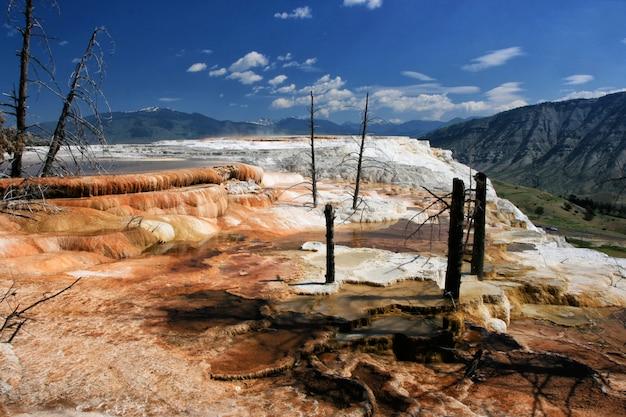 Wzgórze mammoth hot springs, yellowstone