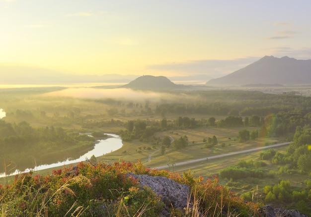 Wzgórze we mgle w dolinie rzeki katun pod złotym niebem w górach ałtaju. syberia, rosja