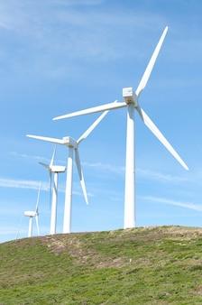 Wzgórze z turbinami wiatrowymi w letni dzień