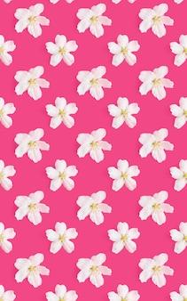Wzór białych kwiatów jabłoni na jasnym różowym tle.