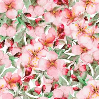 Wzór kwiatów sakura akwarela