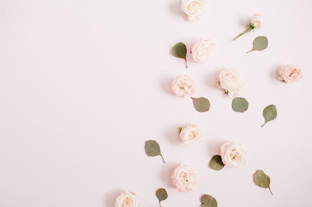 Wzór kwiatów wykonany z beżowych róż, gałęzi eukaliptusa na blado pastelowym różowym tle. płaski układanie, widok z góry