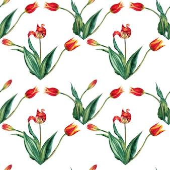 Wzór realistyczne czerwone tulipany na łodygach z liśćmi w trójkach. akwarela ilustracja