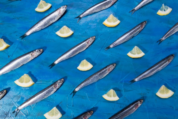Wzór sardeli. owoce morza. mała morska ryba