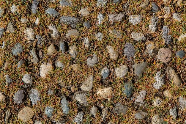 Wzór szary kolor starej brukowanej drogi wśród trawy