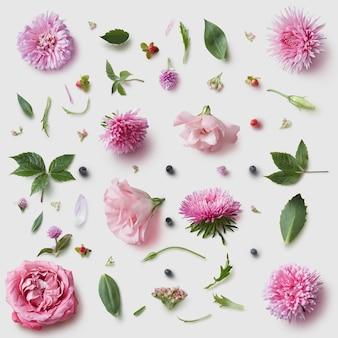 Wzór tapety elegancja z różowe kwiaty na białym tle