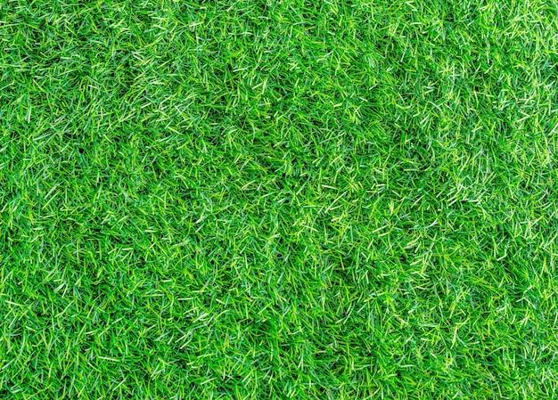 Wzór tekstury zielonej trawie