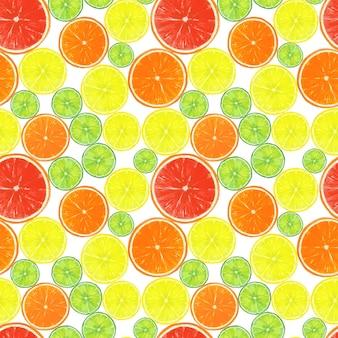 Wzór z akwarela ręcznie rysowane plasterki owoców cytrusowych na białej powierzchni