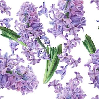 Wzór z kwiatami. hiacynt. akwarela ilustracja. wyciągnąć rękę.