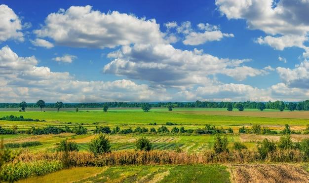 Wzór zebranych pól uprawnych na wzgórzach otoczonych drzewami w ciepłe późne lato z pięknym niebem