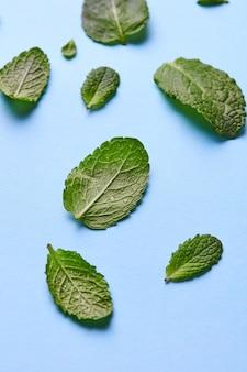 Wzór zielonych płatków mięty z kropelkami wody