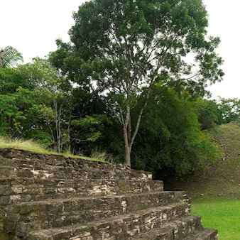 Xunantunich, temple
