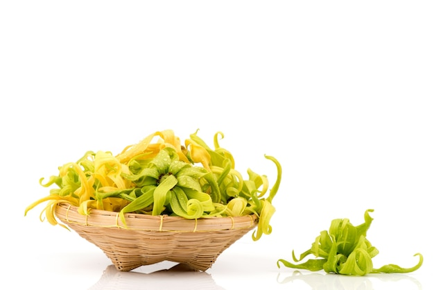 Ylang-ylang lub cananga odorata kwiaty na białym tle