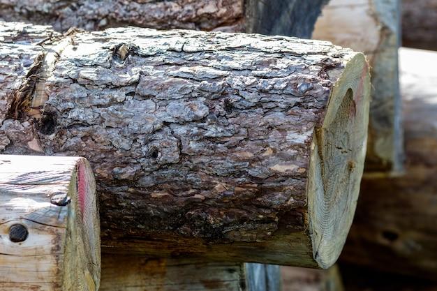 Z bliska zdjęcia ciętych bali drewnianych