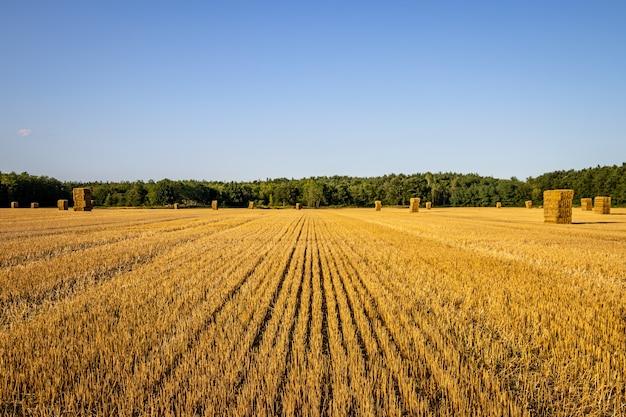 Z pola słomy i bel na węgrzech