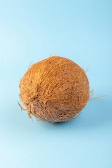 Z przodu zamknięty widok orzechów kokosowych całe mleczne świeże mellow wyizolowanych na mrożonej niebiesko-niebieskim tle tropikalnych orzechów egzotycznych