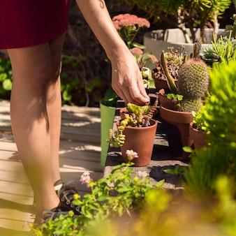Z ukosa kobieta dba o jej rośliny zakończeniu