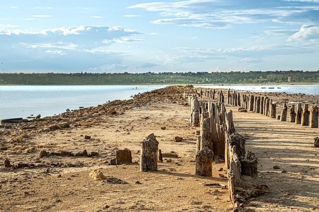 Z wody widać martwe jezioro i stare kłody soli