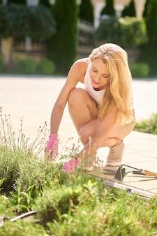 Zaangażowana kobieta pieli chwasty w swoim ogrodzie