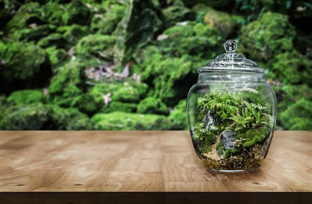 Zaaranżuj ogródek w szklanym słoju jako ozdobę i hobby dla miłośników przyrody, ustawionym na drewnianym stole.