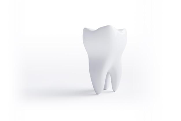 Ząb na białym tle na białej powierzchni