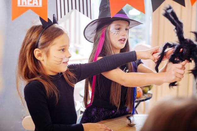 Zabawka pająk. dwie piękne śmieszne dziewczyny ubrane w kostiumy na halloween, grające z czarną straszną pająk zabawką