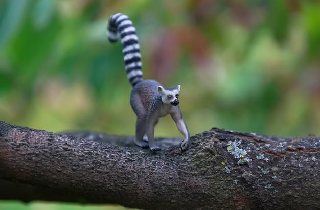Zabawkowy lemur w naturze