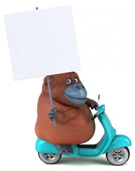 Zabawna animacja orangutana