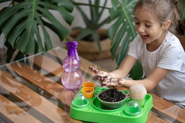 Zabawna mała dziewczynka ogrodnik z roślinami w pokoju w domu, podlewanie i pielęgnacja roślin domowych, przesadza kwiaty.