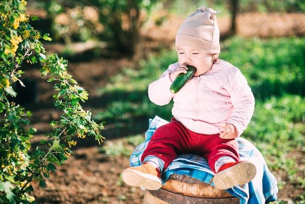 Zabawna mała dziewczynka siedzi na beczce, je świeżego ogórka w ogrodzie