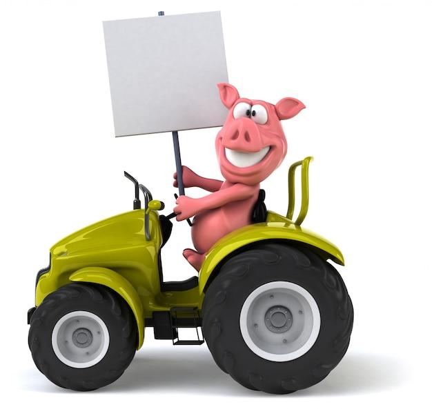 Zabawna świnia