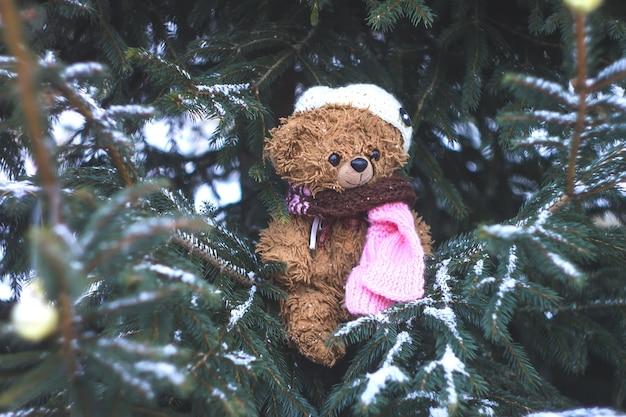 Zabawny brązowy pluszowy miś ubrany w czapkę z dzianiny i szalik na ośnieżonych gałęziach jodły na zewnątrz w zimie