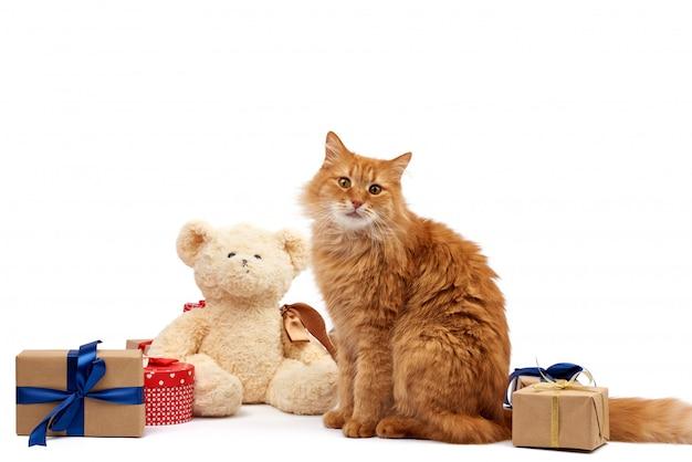 Zabawny dorosły rudy kot siedzący pośrodku pudełek owiniętych w brązowy papier i przewiązanych jedwabną wstążką