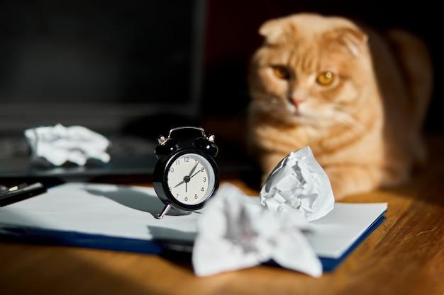 Zabawny, figlarny kot leżący na biurku w słońcu, domowe miejsce pracy z białą kartką papieru, laptopem, notatnikiem, zegarem, zmiętymi papierowymi kulkami i zapasami.